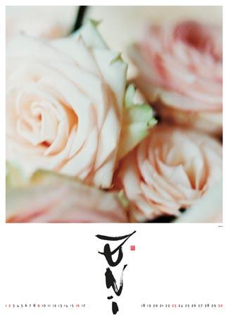 Kalender 2002 - Blumen